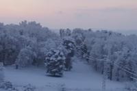 Snow of 28-02-2018