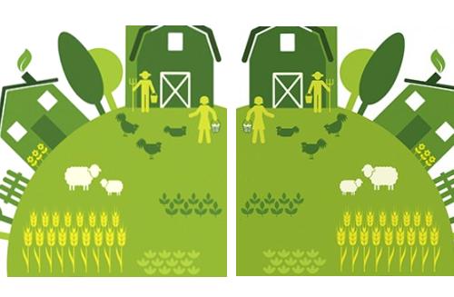 sostenibilitat-sostenibilidad-casa-rural-bergueda-terradefuturs