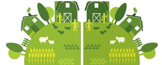 Sostenibilitat a la casa rural